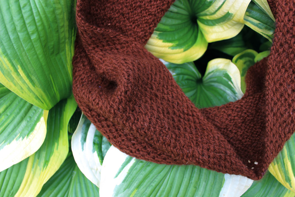 Alpaca Cowl Knitting Pattern : Alpaca Honey Cowl   Punkin Patterns